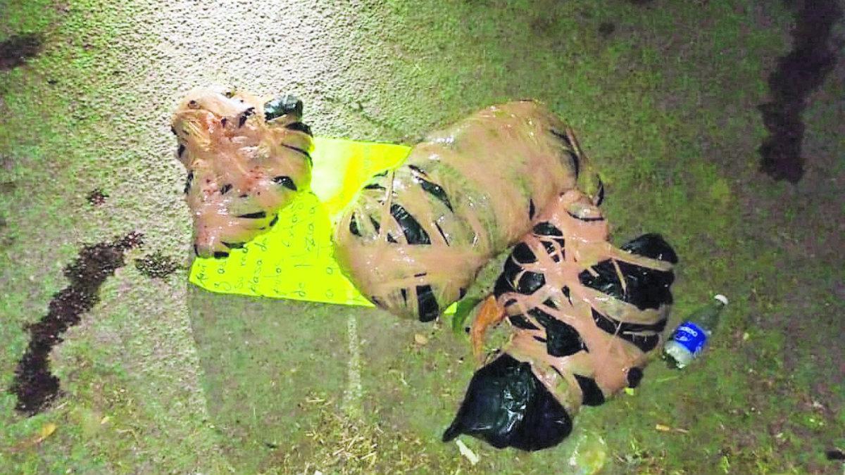 Restos humanos envueltos mensaje amenazante Guerrero