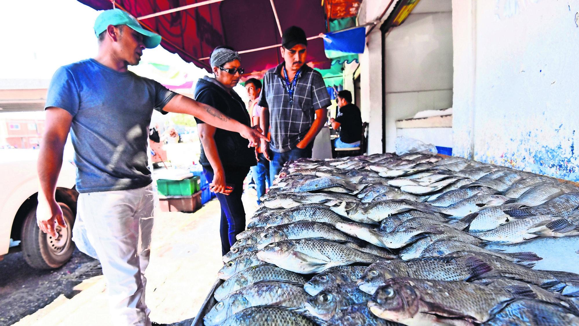 Coprisem Detectan mojarras contaminadas Edoméx Toluca