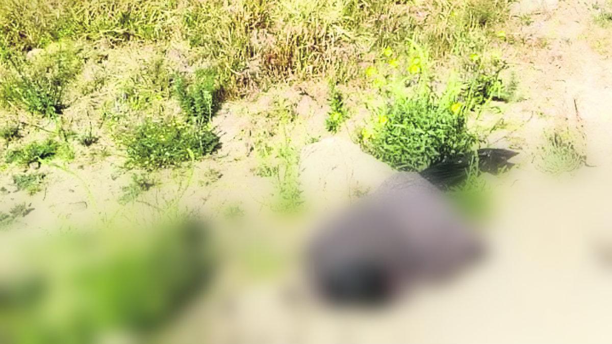 hallan cadáver embolsado encobijado cerca del río lerma