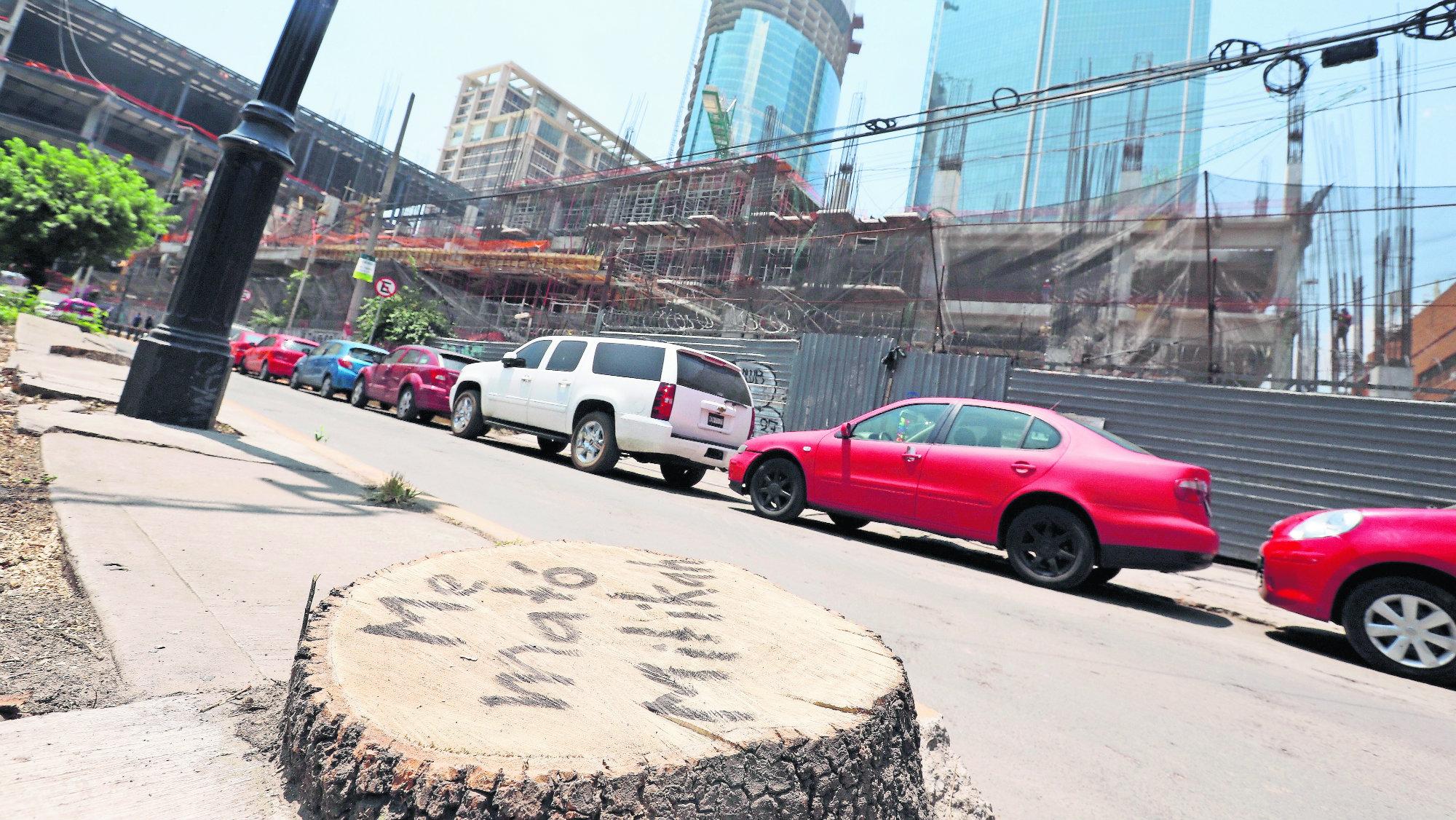 Tala de árboles Congreso exige suspensión Mitikah Reforestación