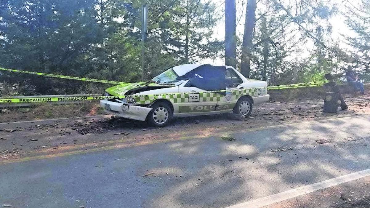 Taxista fallece tras ser aplastado por un árbol en la carretera federal Toluca-Zitácuaro