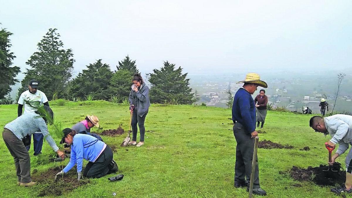 Pobladores se unen campaña reforestación