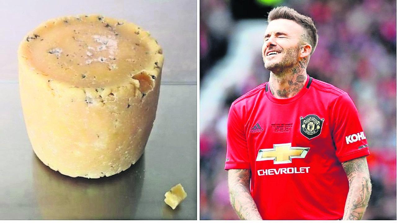 Fabrican quesos bacterias famosos