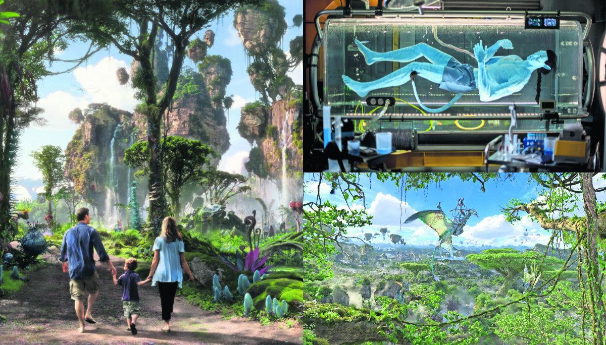 Por qué Pandora The World of Avatar es el mejor parque temático de Disney