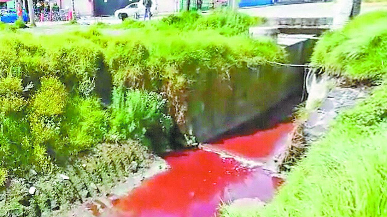 Río de sangre causa molestia a vecinos de Toluca acusan al rastro