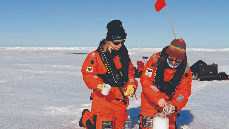 Microplásticos Ártico canadiense contaminación
