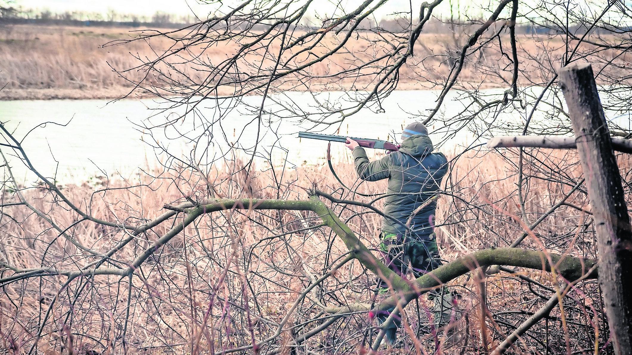 caza hijo padre