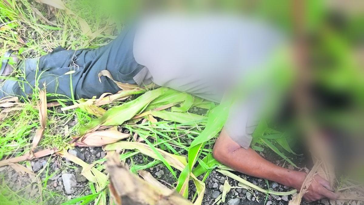 muerto campesinos hallan cadáver plomeado balazo en la cabeza milpa Jantetelco