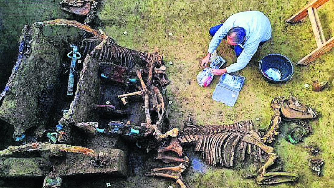 fosiles carruaje croacia