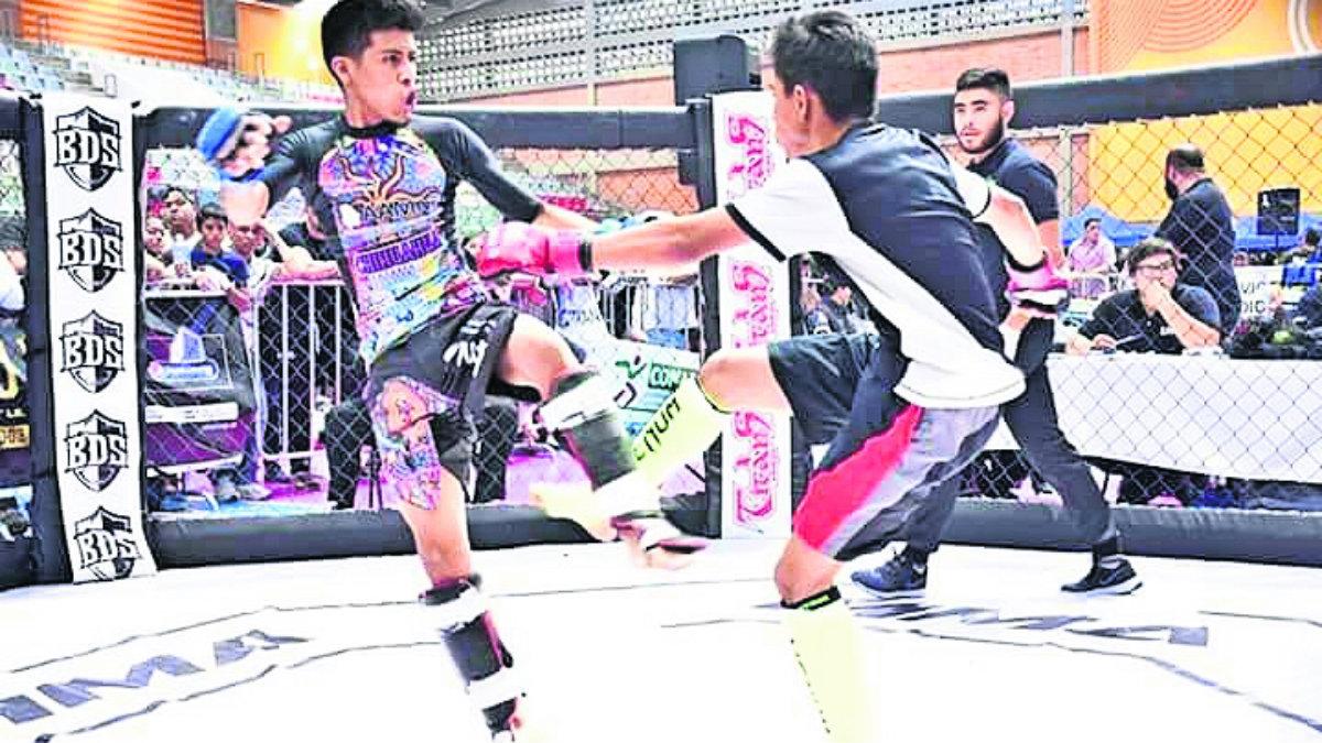 Artes Marciales Mixtas Morelos