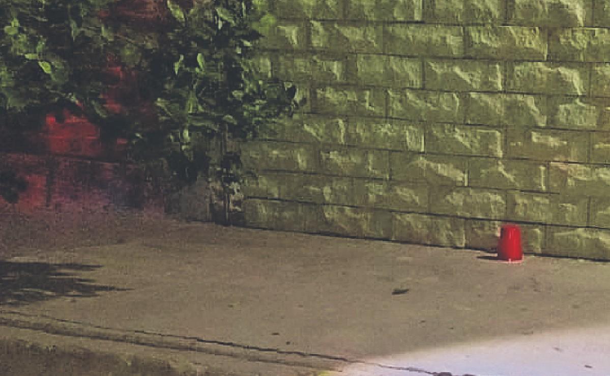 Vecinos escuchan plomazos y al salir descubren el cadáver de un joven tirado, en Ecatepec