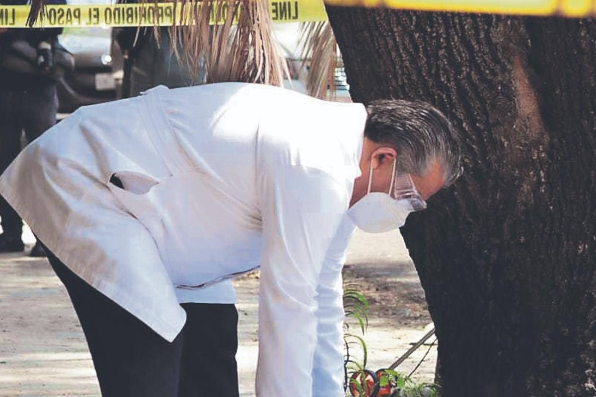 Hombre en situación de calle muere junto a un árbol y recostado boca arriba, en CDMX