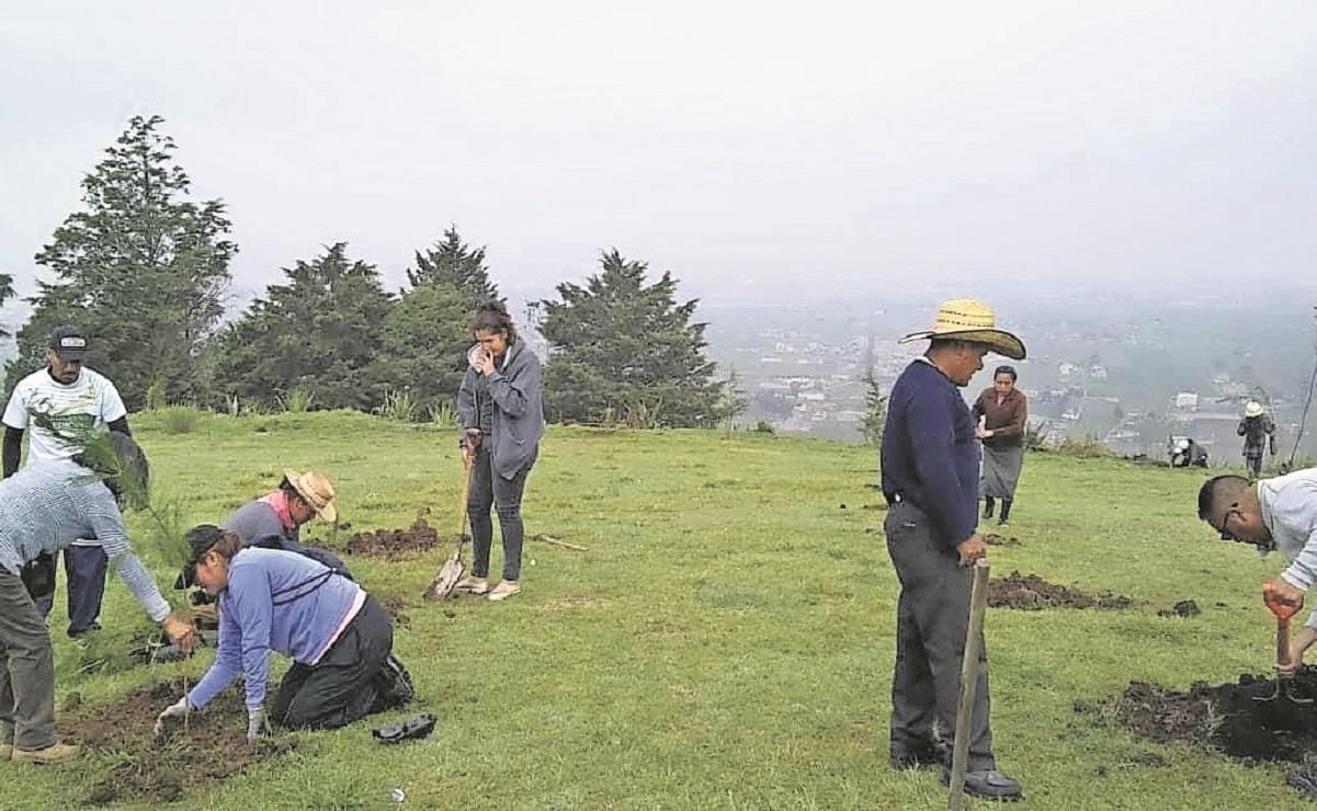 Pobladores se unen a campaña de reforestación en el Cerro del Perico en el Edomex