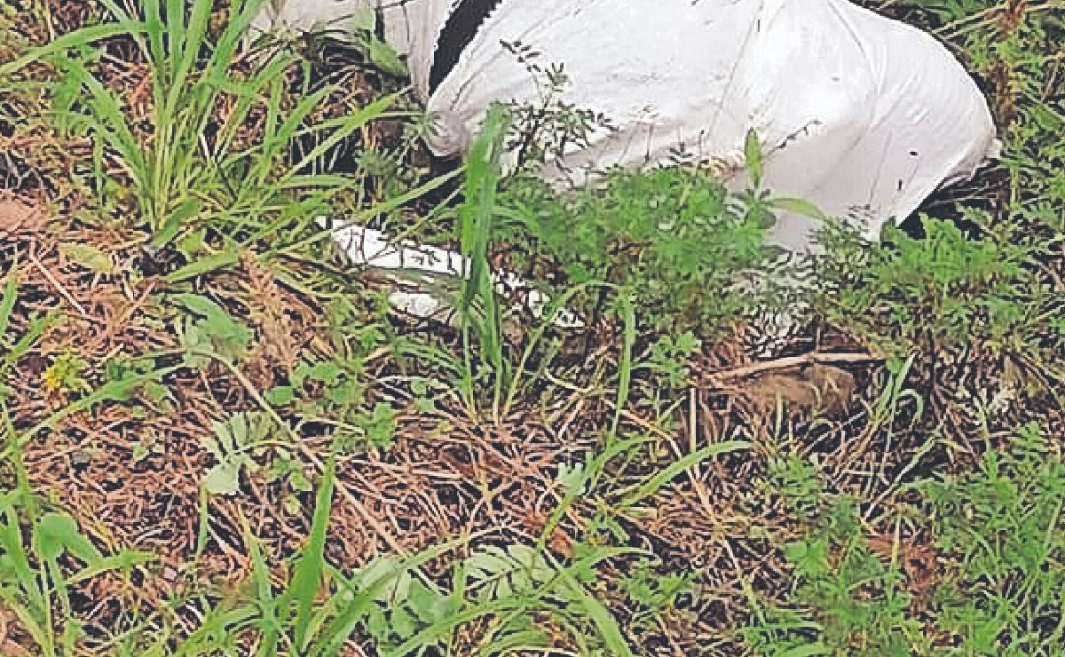 Mano de un asesinado se sale de costal y poblador lo descubre, en Morelos