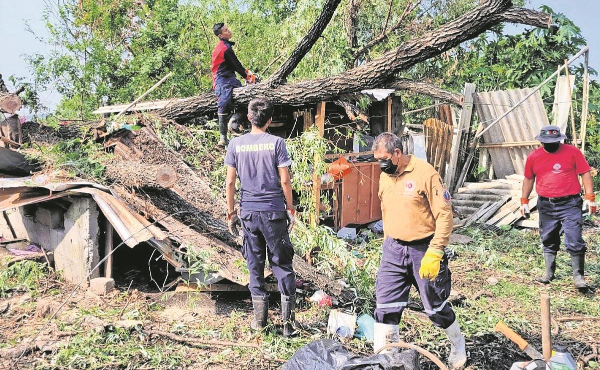 Colapso de árbol quita patrimonio a tres familias en Jiutepec, duermen al aire libre