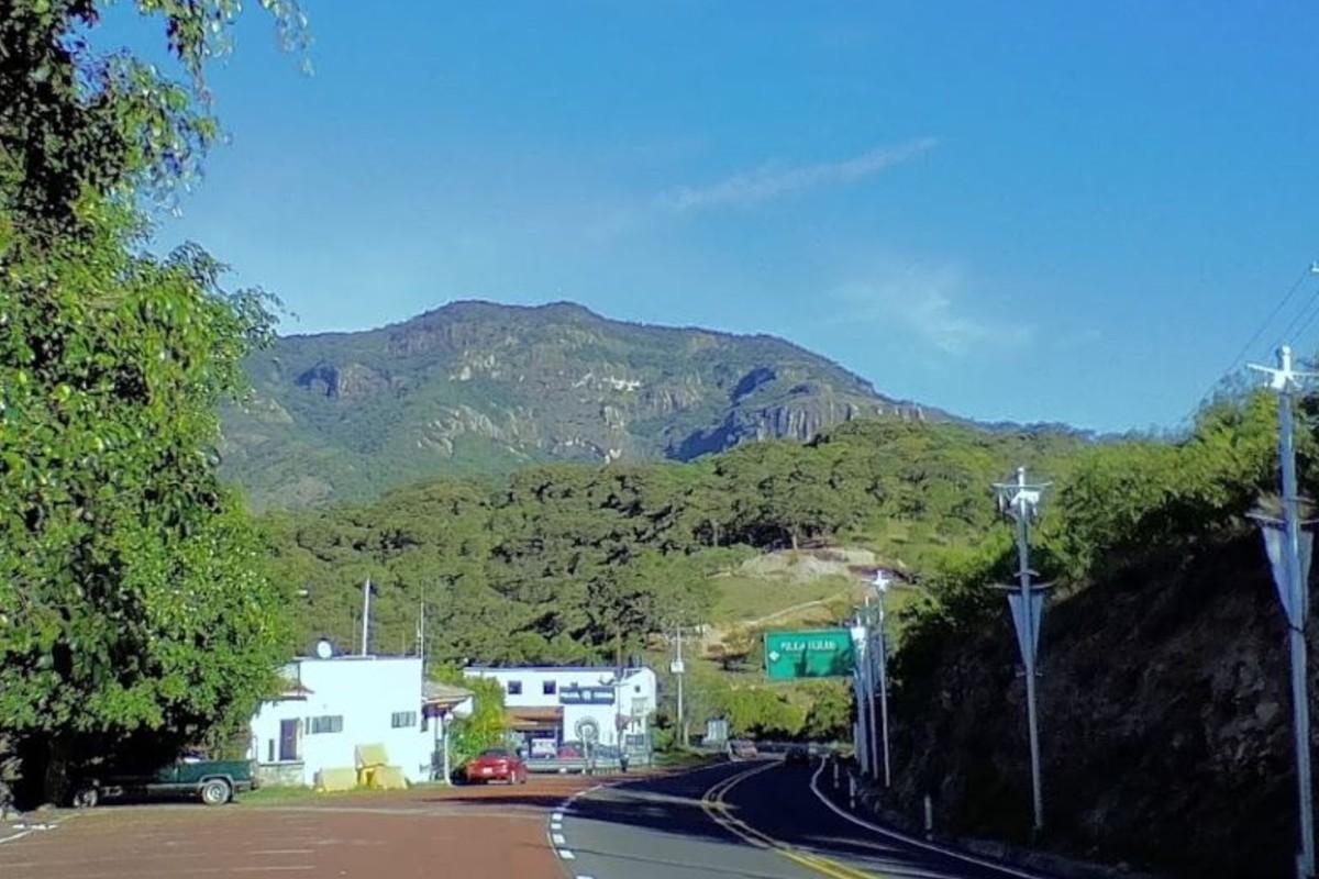 Ejecutan a familiares de exintegrante del cártel de los Beltrán Leyva, en Guerrero