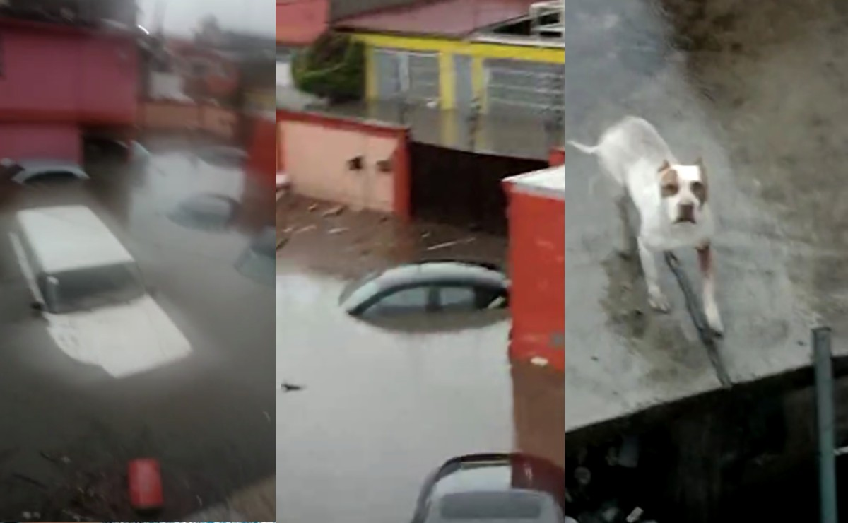 Atrapados en azoteas de Atizapán ven sus autos y tanques de gas flotando, tras lluvia apocalíptica