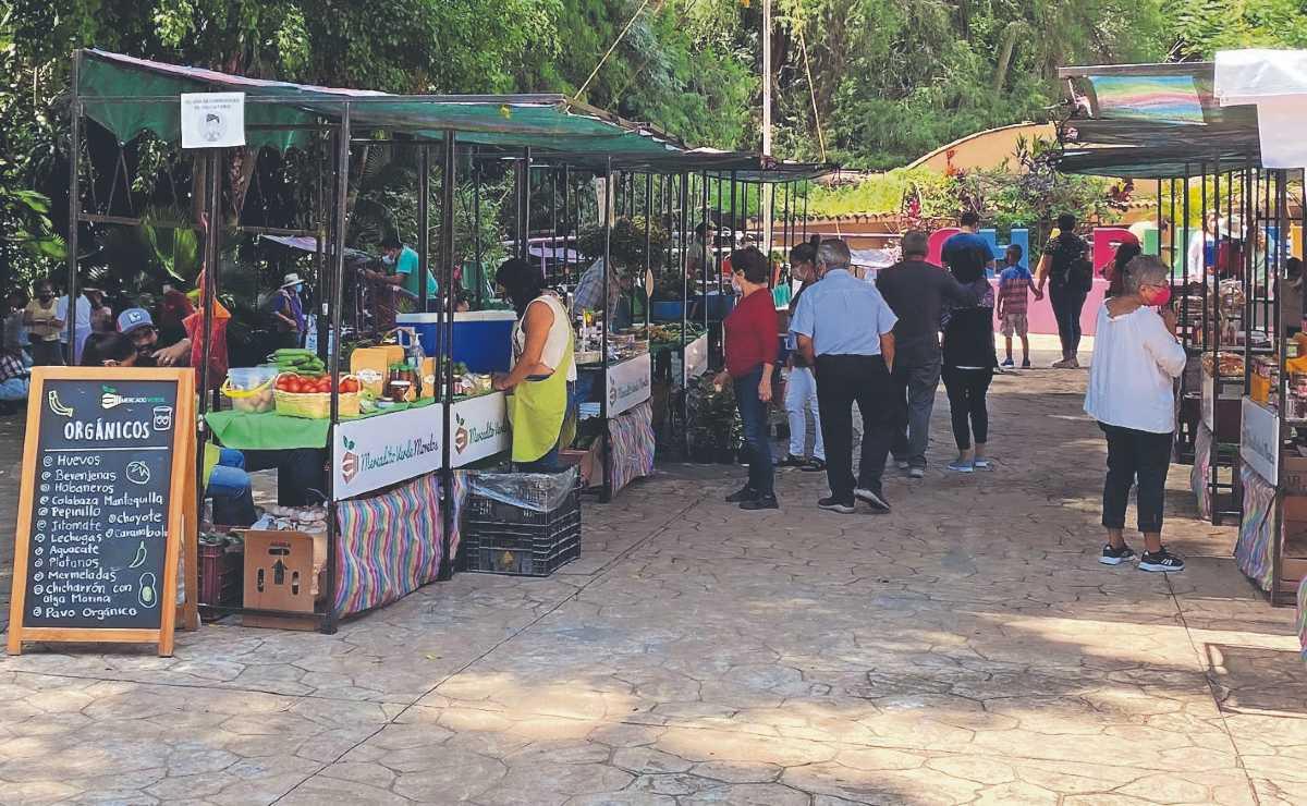 Pandemia marchita los ingresos de comerciantes que se instalaban en un parque de Morelos