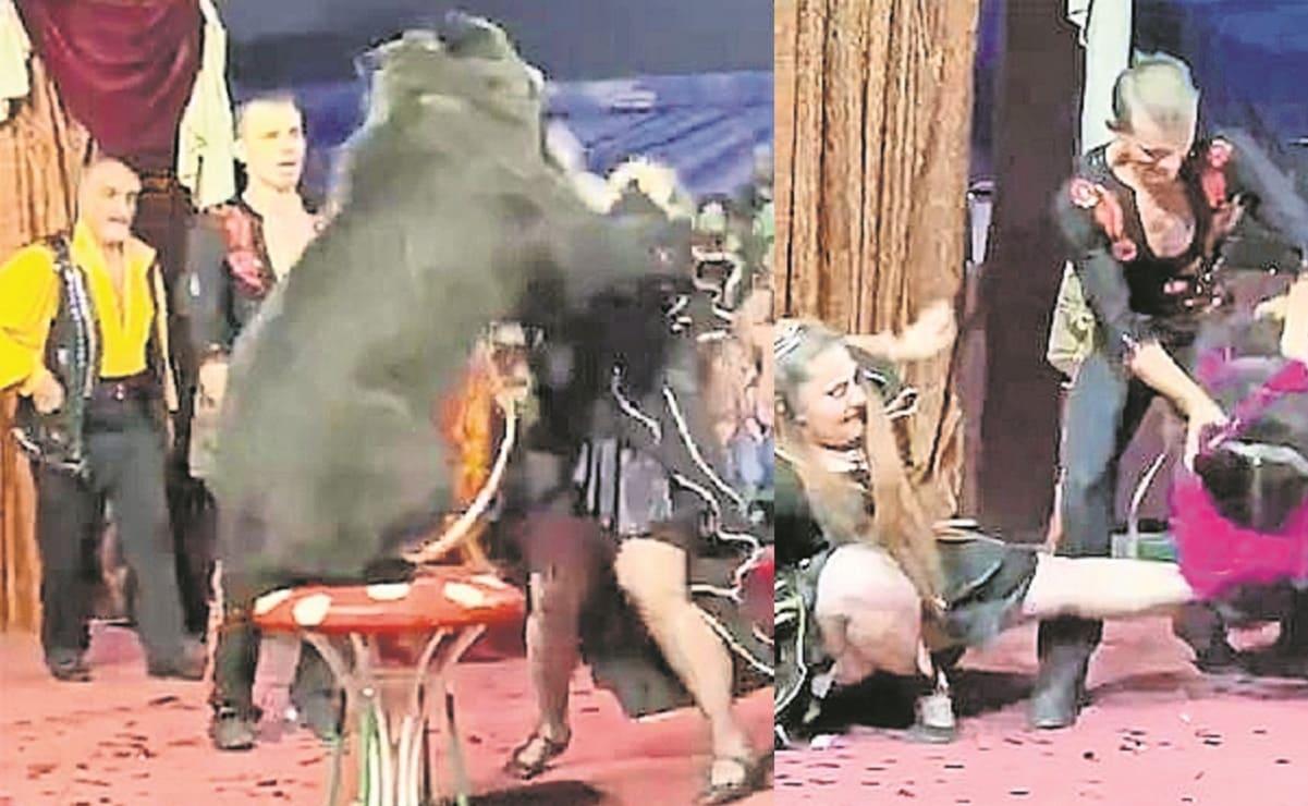 Oso ataca a su entrenadora durante un show infantil, en Rusia
