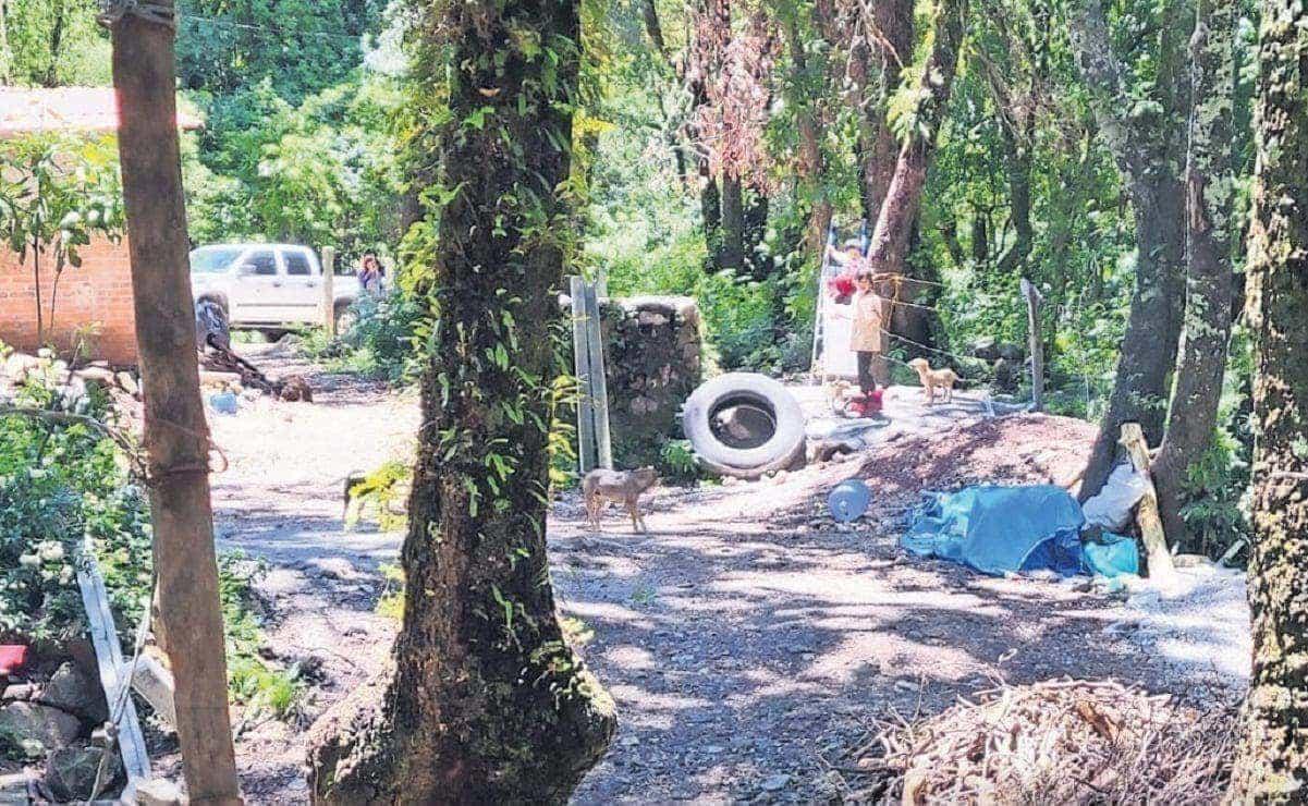 Comuneros construyen una calle en Corredor Biológico Chichinautzin, en Morelos