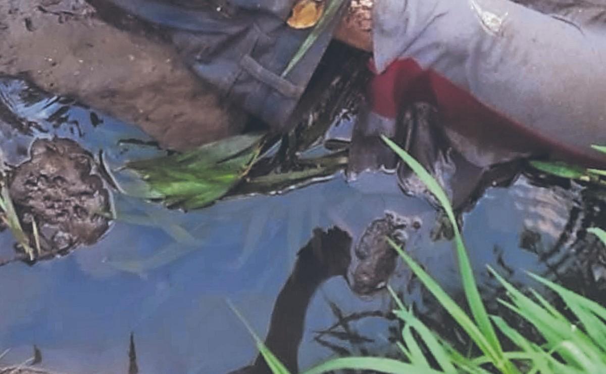 Vecina se asoma en la azotea y descubre a un decapitado, en Morelos
