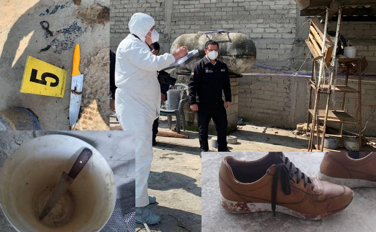 Catean domicilio donde familia asesinó a perro y todo esto encontraron, en Tlalnepantla