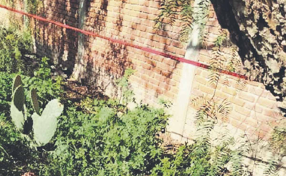 Asesinan a niña de 12 años en Edomex y dejan su cadáver cerca de su casa