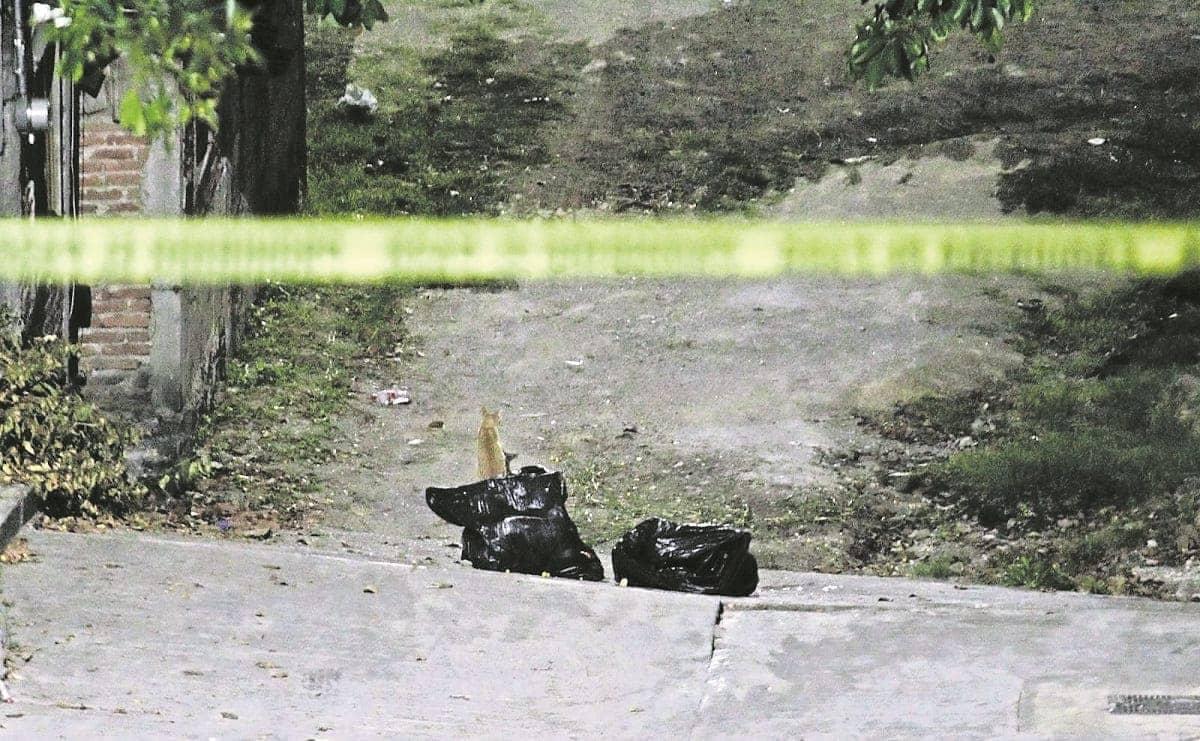 Abandonan restos humanos dentro de bolsas de plástico en Morelos