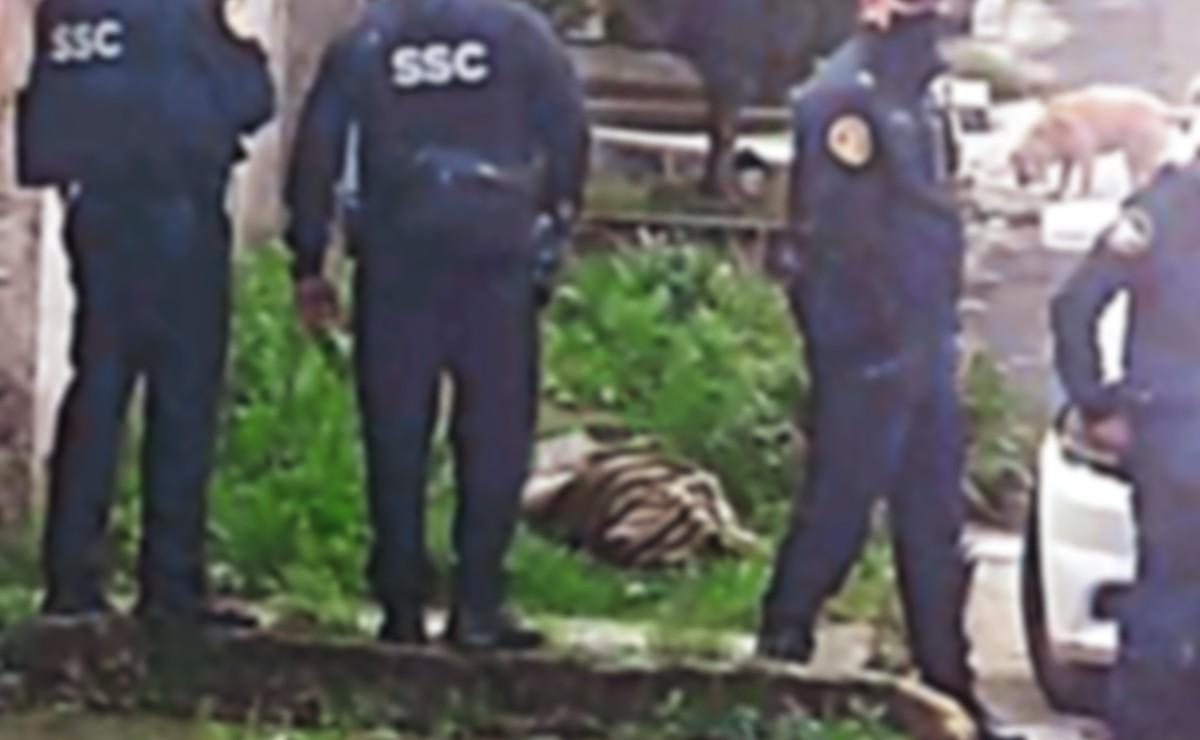 Cadáver fracturado de joven se les aparece a vecinos de Tlalpan, cuando despertaban