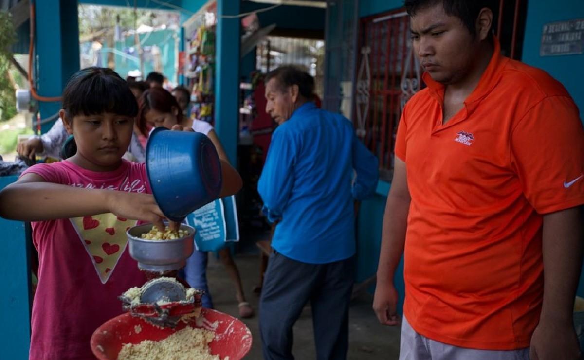 Tras vivir furia del huracán Grace, veracruzanos ahora se enfrentan a la escasez de alimentos