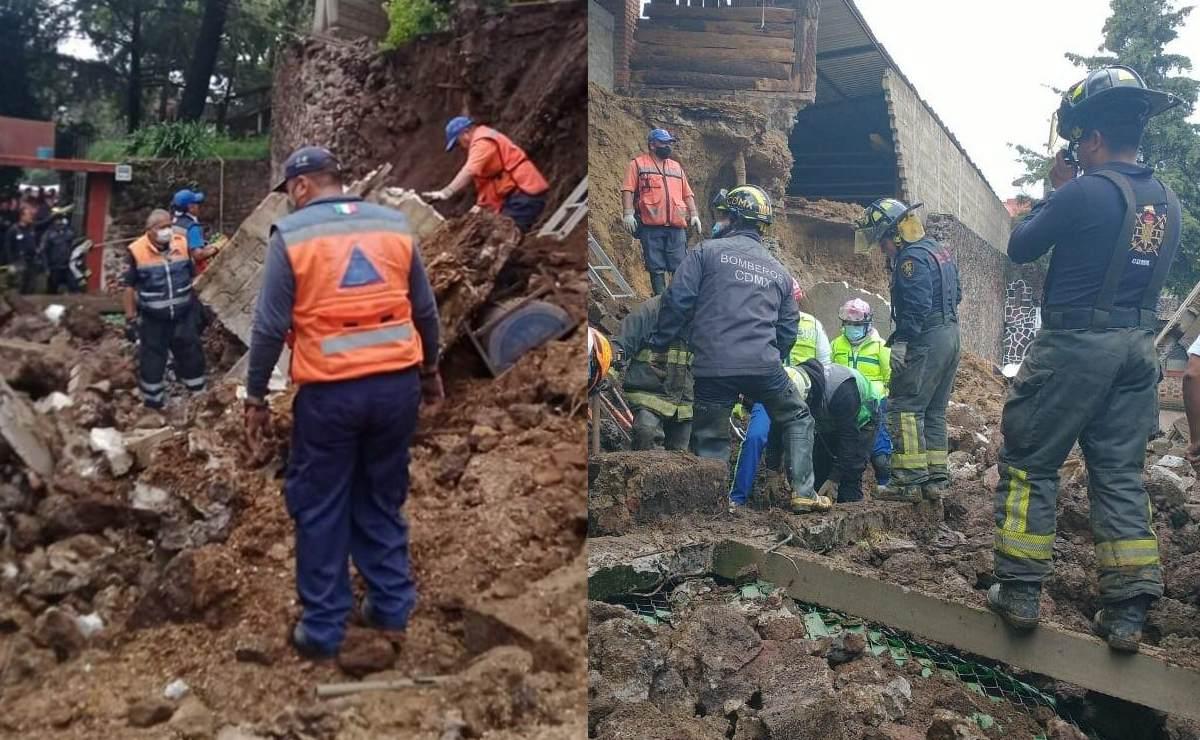 Albergue para perros termina sepultado por reblandecimiento de tierra, en Xochimilco