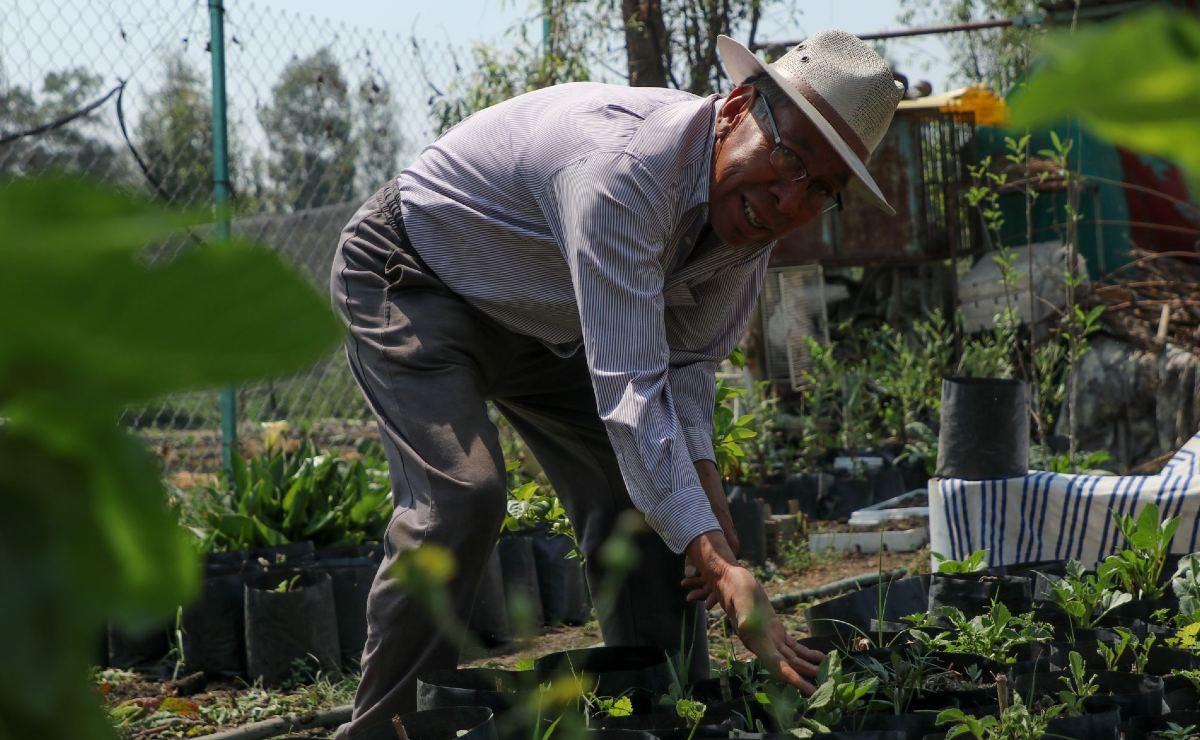 Pactan aplicación de recursos para chinamperos, en Xochimilco
