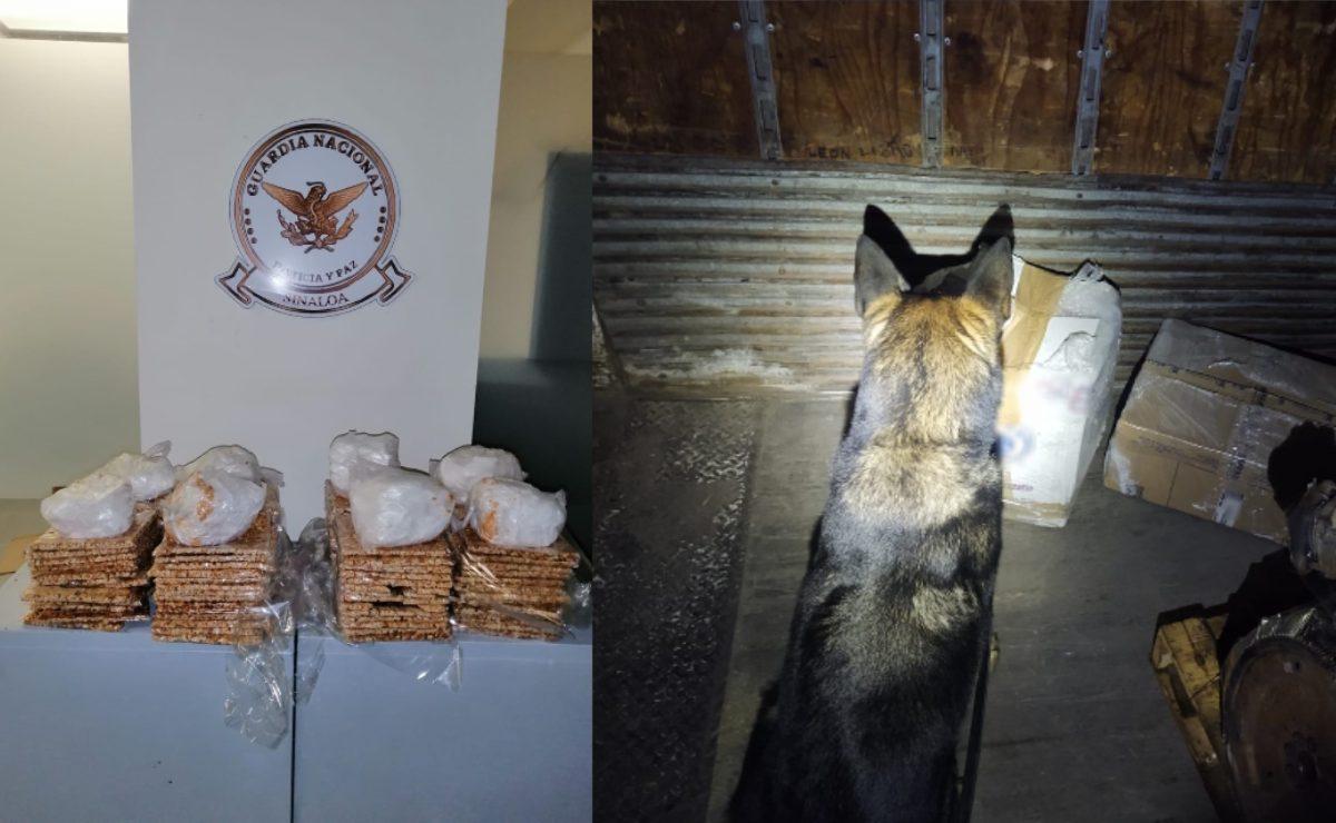 Esconden cargamento de droga dentro de palanquetas, en Sinaloa