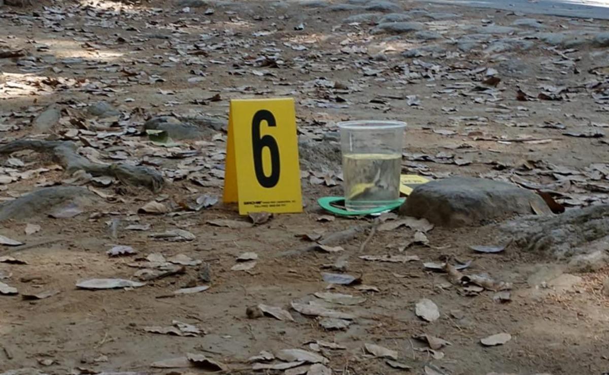 Cadáver de hombre con cara carcomida es hallado en barranca del Edomex