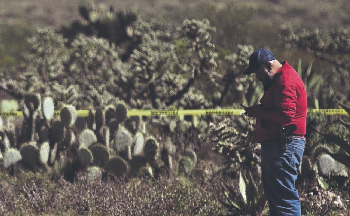 Hallan 10 cuerpos en Zacatecas, uno de ellos es de una mujer policía