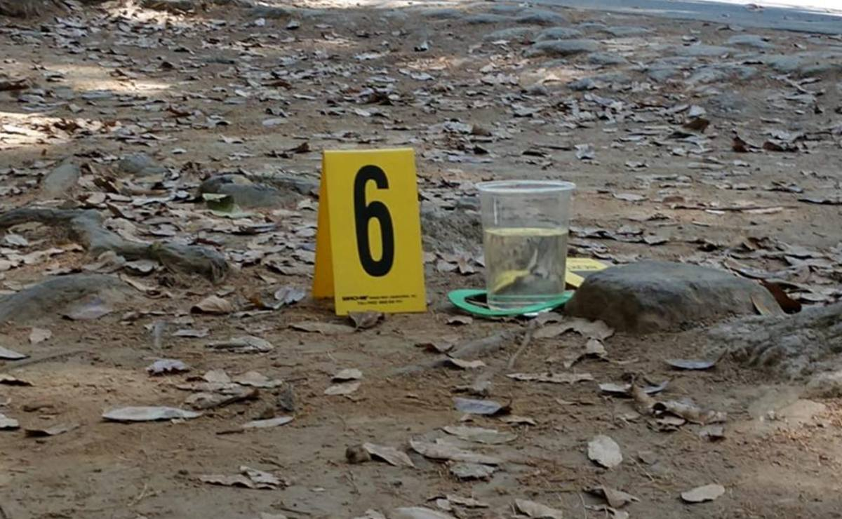 Hallan otros 2 cadáveres podridos en barranca de Morelos, van 8 muertos en mismo municipio