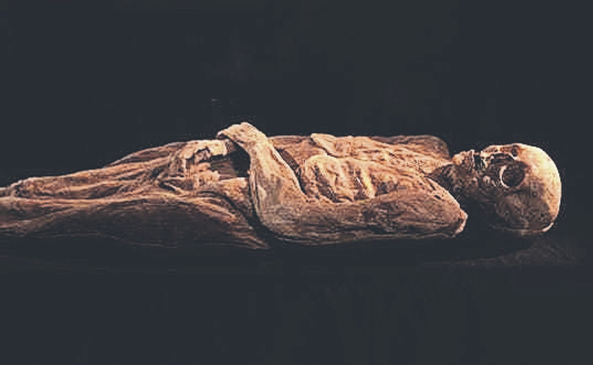 Científicos europeos hallan 3 descendientes vivos de momia suiza del siglo XVIII