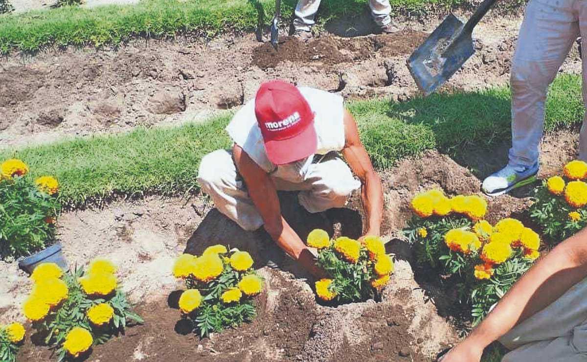 Inicia venta de flores de cempasúchil cultivadas por reos, en CDMX