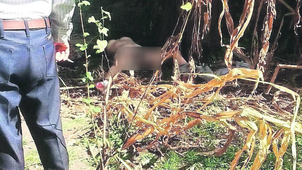 Adorable muñequita desnuda en un parque -