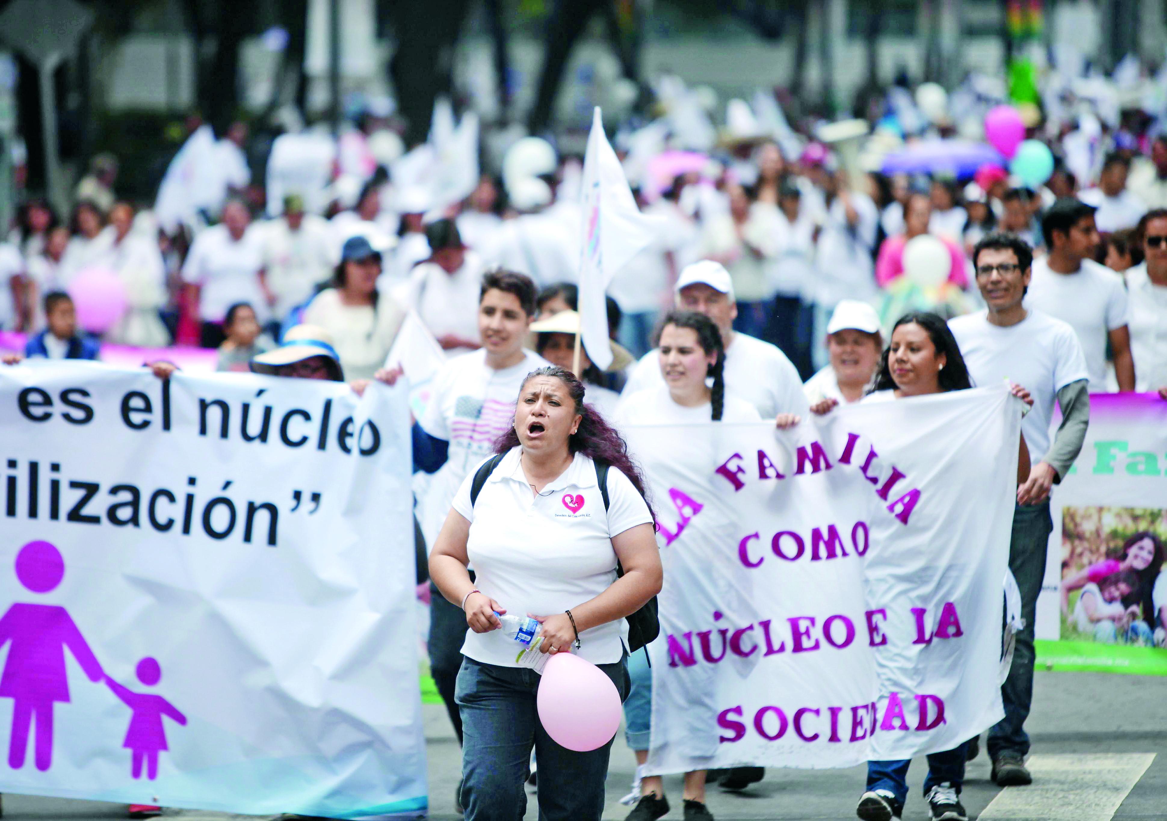 Imagen: Y. Xolapa, G. García