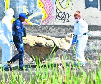 Hallan cadáver de indigente Descomposición Perros devoran CDMX