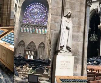 catedral notre dame paris francia