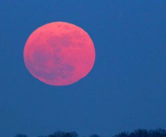 Qué es la luna rosa y cuándo podrás verla
