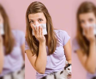 Te atacan las alergias