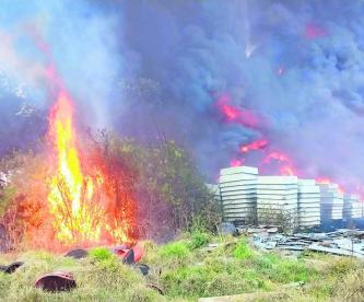 Se pierden tres mil hectáreas por los incendios en la CDMX