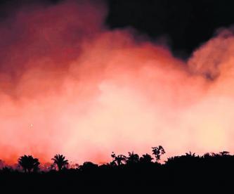 Incenndio Amazona Brasil