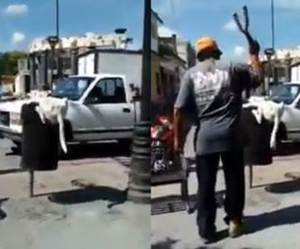 Con tijeras de jardinería hombre corta la cola a perrito que buscaba comida en la basura