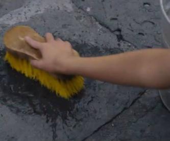 limpieza IMSS hogar