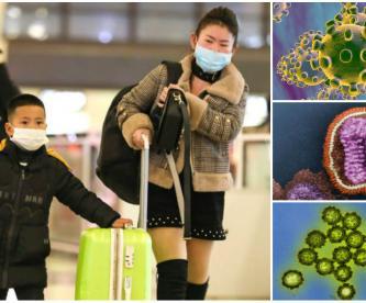 coronavirus de Wuhan virus letal