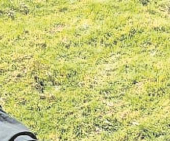 Hombre es asesinado a golpes en Edomex, vecinos del lugar no lo reconcen